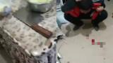 云南父亲教育儿子刀砍其头部?官方:系扔手机砸头致伤